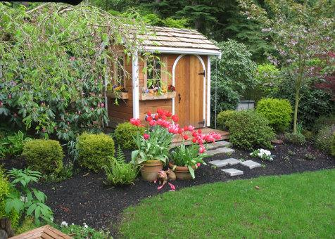 Cedar Palmerston shed 5x7 with arched single door in Issaquah, Washington. ID number 54973-1