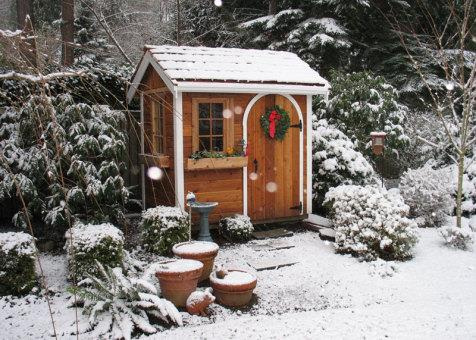 Cedar Palmerston shed 5x7 with arched single door in Issaquah, Washington. ID number 54973-2