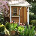 Cedar Palmerston shed 5x7 with arched single door in Issaquah, Washington. ID number 54973-3
