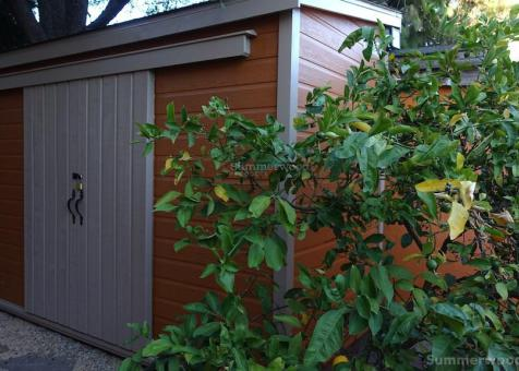 Canexel Sarawak 5ft x 20ft Garden Shed located in Berkeley, CA. ID number 220813